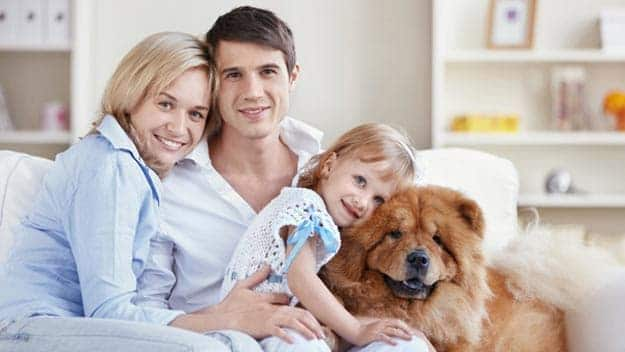 Wills & Trusts dog-young-family Direct Wills Dartford